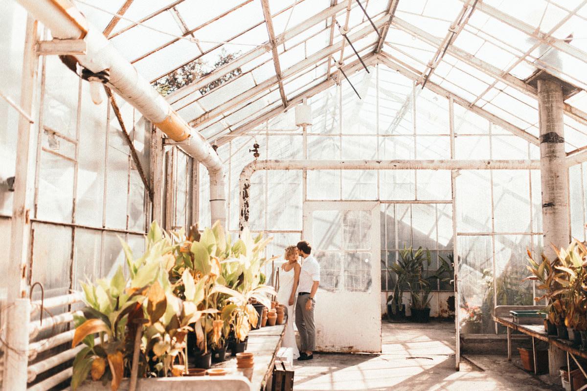 IA greenhouse 001