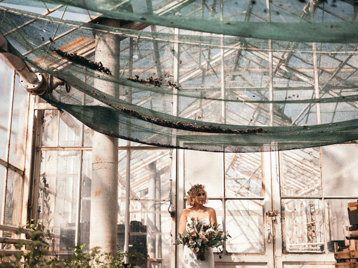 IA greenhouse 005
